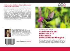 Bookcover of Vulneración del Derecho a la Educación Intercultural Bilingüe