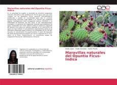 Обложка Maravillas naturales del Opuntia Ficus-Indica