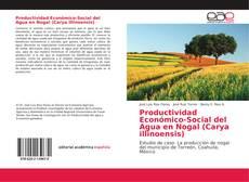 Обложка Productividad Económico-Social del Agua en Nogal (Carya illinoensis)