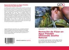 Remoción de Flúor en Agua Potable Utilizando Zeolita Natural的封面
