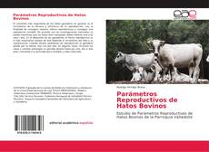 Bookcover of Parámetros Reproductivos de Hatos Bovinos