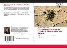 Bookcover of Determinación de la Calidad Ambiental del Suelo