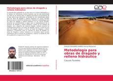 Metodología para obras de dragado y relleno hidráulico kitap kapağı