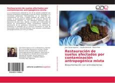 Portada del libro de Restauración de suelos afectados por contaminación antropogénica mixta