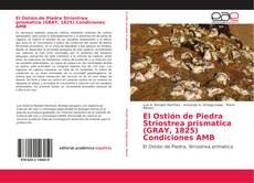 Bookcover of El Ostión de Piedra Striostrea prismatica (GRAY, 1825) Condiciones AMB