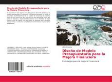 Buchcover von Diseño de Modelo Presupuestario para la Mejora Financiera