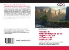 Copertina di Planear el mantenimiento de la vegetación en sistemas de distribución