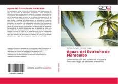 Aguas del Estrecho de Maracaibo的封面