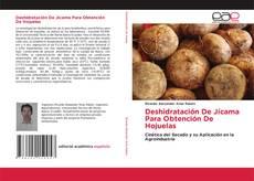 Deshidratación De Jícama Para Obtención De Hojuelas的封面