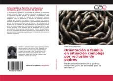 Orientación a familia en situación compleja por reclusión de padres的封面