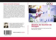 Bookcover of Modelo de Gestión de Riesgos