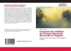 Copertina di Catastro de anfibios en Parque Nacional Bernardo O´Higgins