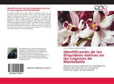 Portada del libro de Identificación de las Orquídeas nativas en las Lagunas de Montebello