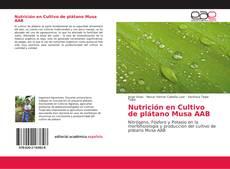 Nutrición en Cultivo de plátano Musa AAB的封面