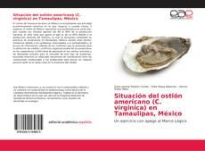 Bookcover of Situación del ostión americano (C. virginica) en Tamaulipas, México