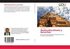 Couverture de Multiculturalismo y Derechos