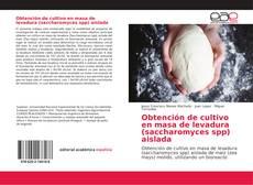 Borítókép a  Obtención de cultivo en masa de levadura (saccharomyces spp) aislada - hoz