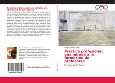 Обложка Práctica profesional, una mirada a la formación de profesores