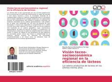 Capa do livro de Visión tecno-socioeconómica regional en la eficiencia de lácteos