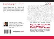 Capa do livro de Separación Magnética de las Colas del Proceso Caron de Moa