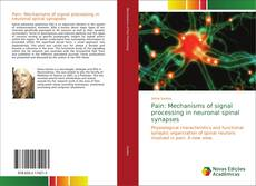 Bookcover of Pain: Mechanisms of signal processing in neuronal spinal synapses