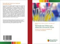 Remoção de Tiofeno por Adsorção Utilizando Argila的封面