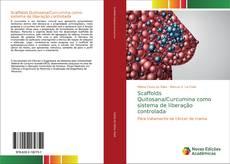 Capa do livro de Scaffolds Quitosana/Curcumina como sistema de liberação controlada