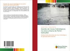 Capa do livro de Gestão de riscos hidrológicos na zona urbana de Porto Velho/RO