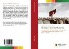 Bookcover of Núcleo de Direitos Humanos