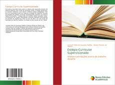 Bookcover of Estágio Curricular Supervisionado