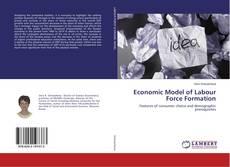 Copertina di Economic Model of Labour Force Formation