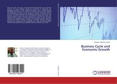 Bookcover of Business Cycle and Economic Growth