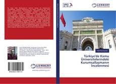 Türkiye'de Kamu Üniversitelerindeki Kurumsallaşmanın İncelenmesi kitap kapağı