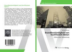 Buchcover von Brandbeständigkeit von hochfestem Beton