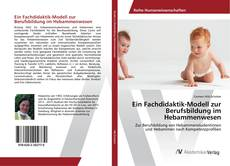 Bookcover of Ein Fachdidaktik-Modell zur Berufsbildung im Hebammenwesen