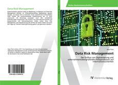 Bookcover of Data Risk Management