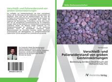 Capa do livro de Verschleiß- und Polierwiderstand von groben Gesteinskörnungen