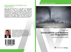 Vulnerabilität und Resilienz von Megastädten kitap kapağı