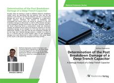 Determination of the Post Breakdown Damage of a Deep-Trench Capacitor kitap kapağı
