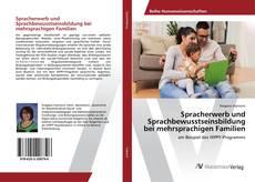 Spracherwerb und Sprachbewusstseinsbildung bei mehrsprachigen Familien的封面
