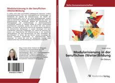 Buchcover von Modularisierung in der beruflichen (Weiter)Bildung