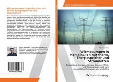 Bookcover of Wärmepumpen in Kombination mit therm. Energiespeicher und Stromnetzen