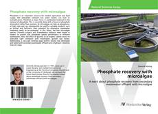 Bookcover of Phosphate recovery with microalgae