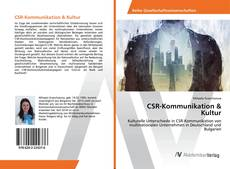 CSR-Kommunikation & Kultur的封面