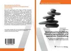 Bookcover of Betriebswirtschaftliche Steuerungssysteme und operatives Controlling
