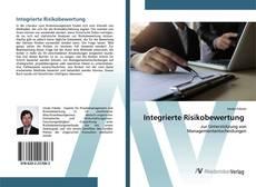 Portada del libro de Integrierte Risikobewertung