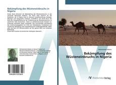 Bekämpfung des Wüsteneinbruchs in Nigeria kitap kapağı