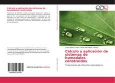 Bookcover of Cálculo y aplicación de sistemas de humedales construidos