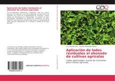 Aplicación de lodos residuales al abonado de cultivos agrícolas的封面
