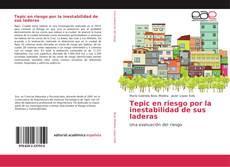 Bookcover of Tepic en riesgo por la inestabilidad de sus laderas